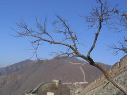 Photo of Beijing Private Tour: Half-Day Tour to Great Wall at Juyongguan IMG_1545.JPG
