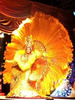 The dancer wears a golden suit of feathers resemble a golden peacock. , ANGEL VILLEGAS - April 2014