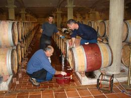 Photo of   Testing the wine