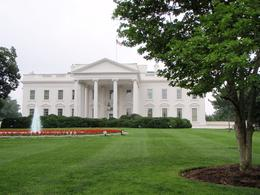 The Beautiful White House, CAROLYN C - June 2009