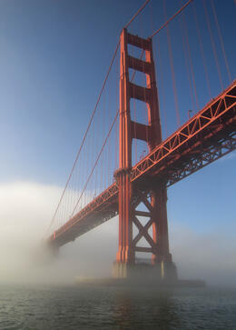Photo of San Francisco Whale Watching & Wildlife Eco Tour from San Francisco The Golden Gate Bridge emerging from the mist