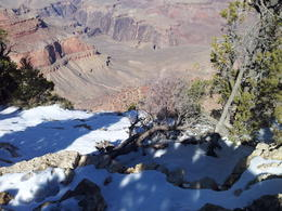 Photo of Phoenix Grand Canyon via Sedona and Navajo Reservation View of Bright Angel trail from Rim Path.