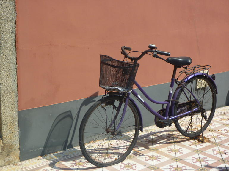 Bicycle at the Buddist Temple - Singapore