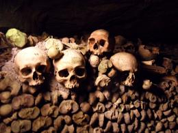 Photo of Paris Skip the Line: Catacombs of Paris Small-Group Walking Tour Bones at the Catacombs in Paris