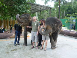 Andy and Katie meeting the smaller elephants , ANDREW M - November 2011