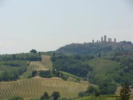 Photo of Florence Tuscany in One Day Sightseeing Tour Chianti Farm & Wine vineyard