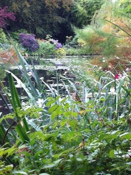 Japanese garden at Giverny, Felicia L - October 2010