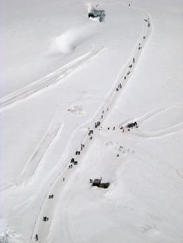 Photo of Zurich Jungfraujoch: Top of Europe Day Trip from Zurich Hikers Walking Towards the Husky Ride