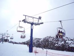 Photo of Melbourne Mt. Buller Ski Tour from Melbourne Skylift - ski tour Mt. Buller