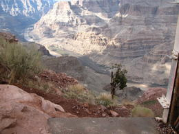 Photo of Las Vegas Grand Canyon and Hoover Dam Day Trip from Las Vegas with Optional Skywalk 082