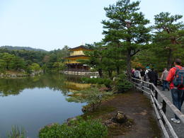 Photo of Osaka Kyoto and Nara Day Tour Including Golden Pavilion and Todai-ji Temple from Osaka Kinkaku-ji - The Golden Pavilion