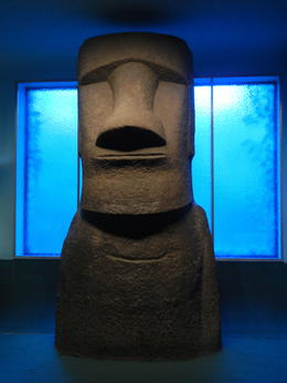 Photo of New York City American Museum of Natural History ME WANT GUM GUM!!!