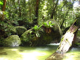 Tiny but beautiful rock pool, just for ourselves! , Patricia P - January 2011