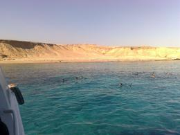 Photo of   Ras Mohamed Red Sea Cruise & Snorkeling, Sharm el Sheikh