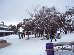 Photo of Melbourne Mt. Buller Ski Tour from Melbourne Snow Park