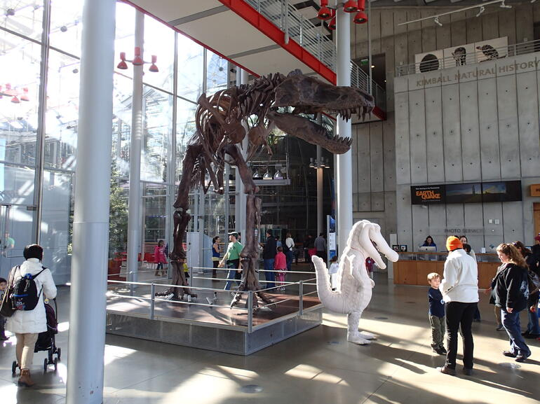 The entrance complete with dinosaur skeleton - San Francisco