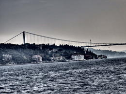 Photo of Istanbul Bosphorus Strait and Black Sea Half-Day Cruise from Istanbul Under the Bridge