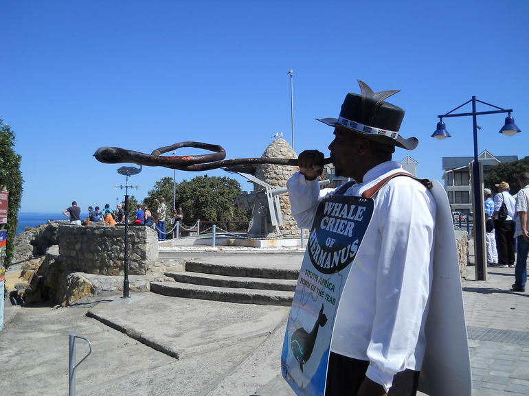 Whale Crier of Hermanus, South Africa - Cape Town