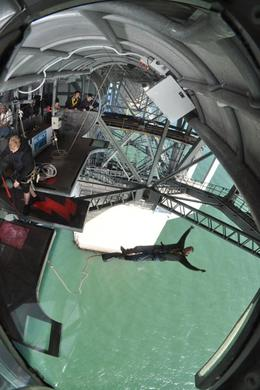 Photo of Auckland Auckland Harbour Bridge Bungy Jump Daddy Free Falls