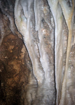 Stalagtite at Harrisons Cave, Louise H - July 2011