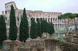 Photo of Rome Ancient Rome Half-Day Walking Tour Roman Ruins