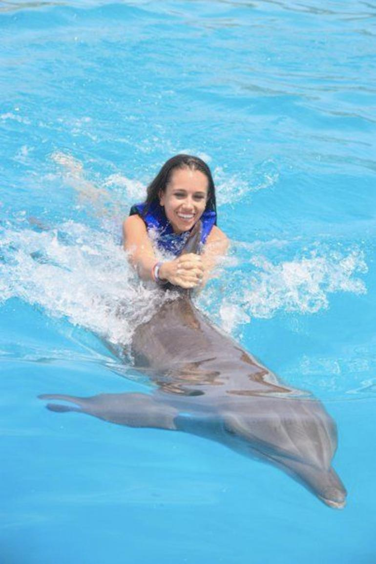 Swim with the dolphins - Los Cabos