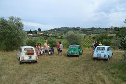 A stop in a Tuscan vineyard to hear about how they make the wines they are famous for , Ashley H - July 2014