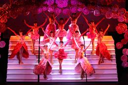 Photo of Paris Paris Paradis Latin Dinner and Show Great costumes!