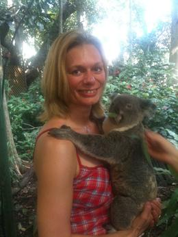 Photo of Brisbane Brisbane Afternoon City Tour including Lone Pine Koala Sanctuary and Mt Coot-tha Koala hug