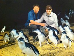 Superimposed pic with the penguins , Julie W - April 2015