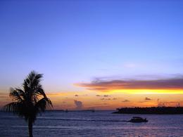 Famous Key West sunset from Mallory Square , Leah - May 2011