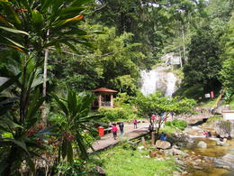 Photo of Singapore 7-Day Tour from Singapore: Malacca, Kuala Lumpur, Cameron Highlands and Penang Cameron Highlands