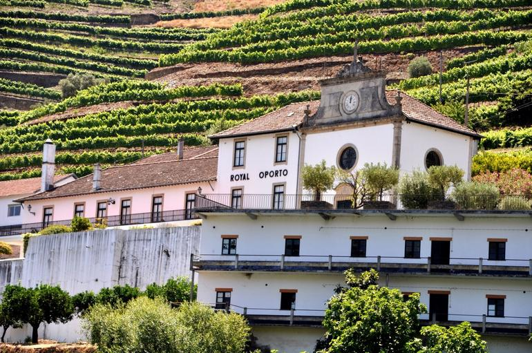 Cruising the Douro - Porto & Northern Portugal