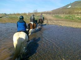 Photo of Reykjavik Viking Horse-Riding and Gulfoss and Geysir Express Tour from Reykjavik Morning
