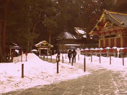 Photo of Tokyo Nikko National Park Day Trip from Tokyo Shogun Temple