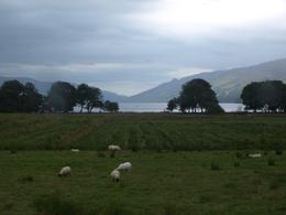 Photo of Edinburgh West Highland Lochs and Castles Small Group Day Trip from Edinburgh West Highlands landscape