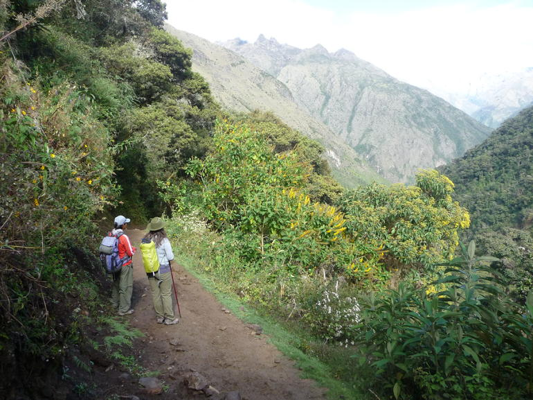 Hiking down into the cloud forest - Cusco