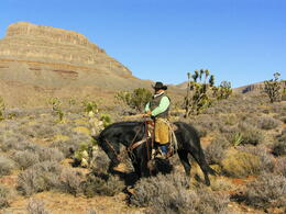Photo of Las Vegas Grand Canyon Helicopter and Ranch Adventure Joe
