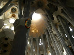 Photo of Barcelona Skip the Line: Barcelona Sagrada Familia Tour Light streams in