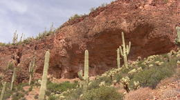 was caught by the colors of the terrain and the mountains clad with cactus. , Lesley J - June 2013