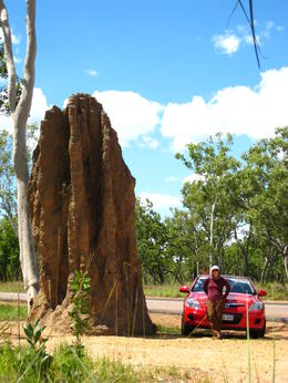 Photo of   Giant Catedral Termite Mount