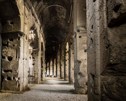 Photo of Rome Ancient Rome and Colosseum Tour: Underground Chambers, Arena and Upper Tier Inner hallway of the Colosseum