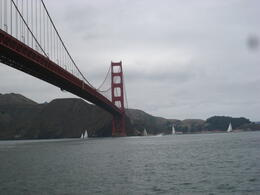 Photo of San Francisco Whale Watching & Wildlife Eco Tour from San Francisco Cruising under the Golden Gate Bridge