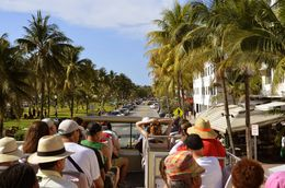 photographed from back of bus,BTW do not stand because of palm trees and cables , Ira F - May 2015