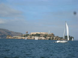 Photo of San Francisco Whale Watching & Wildlife Eco Tour from San Francisco Alcatraz