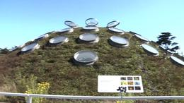 Photo of San Francisco Skip the Line: California Academy of Sciences Behind-the-Scenes Tour Living Roof