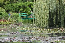 A view of the Japanese bridge in Monet's water garden, Michael L - July 2009