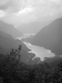 Photo of Fiordland & Milford Sound Doubtful Sound Wilderness Cruise from Te Anau Black & white