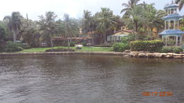 This is a home that is located on the river in Fort Lauderdale. It can be seen from the deck of the Jungle Queen. , charmain w - September 2015