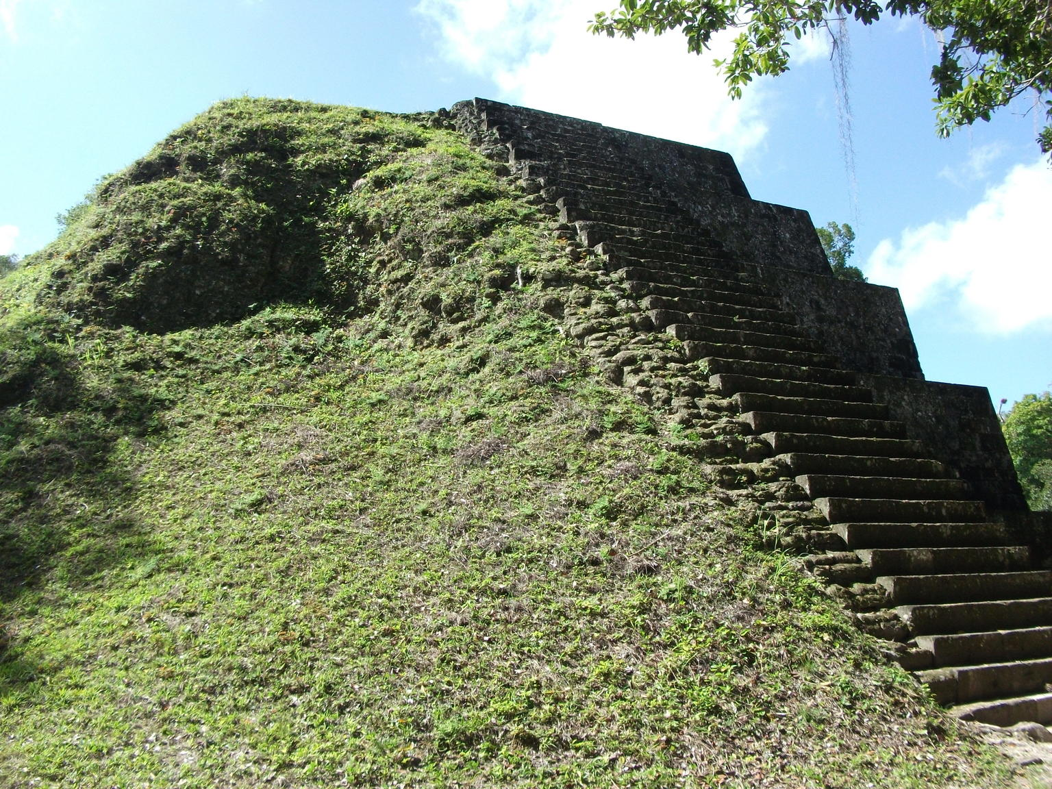 Tikal Day Trip by Air from Guatemala City with Lunch